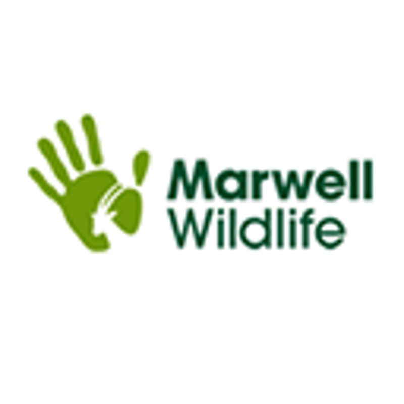 Marwell Wildlife Coupons & Promo Codes