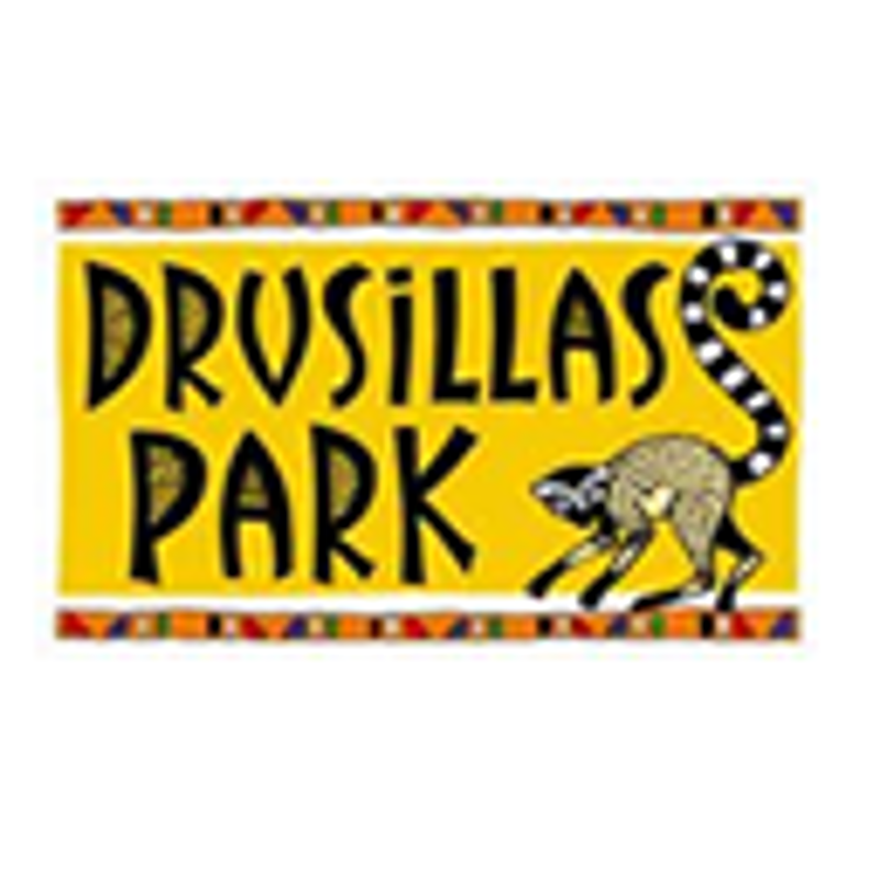 Drusillas Park Coupons & Promo Codes